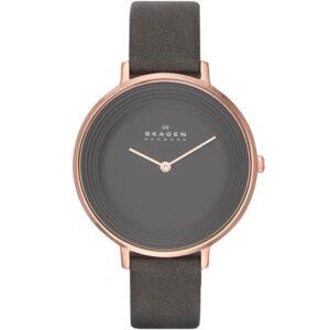 Часы Skagen SKW2216