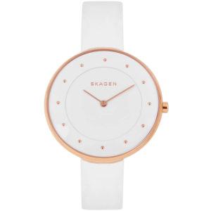 Часы Skagen SKW2291