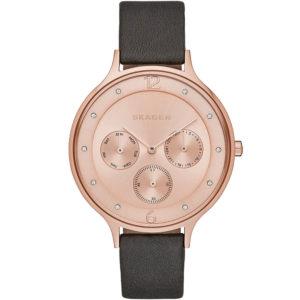 Часы Skagen SKW2392