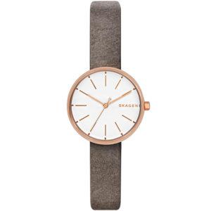 Часы Skagen SKW2644