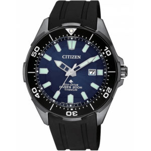 Часы Citizen BN0205-10L